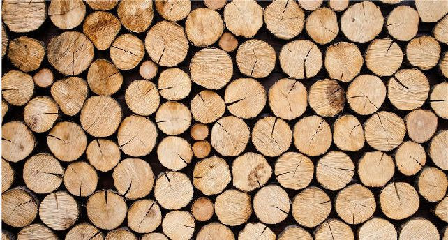 Graded Drying of Wood Moisture Content and Its Energy Saving Analysis