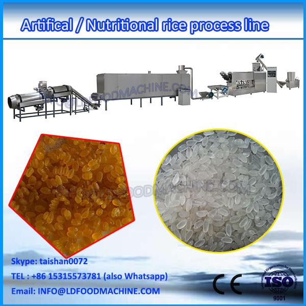 High quality Double Screw Hot Sale Automatic DZ65 II Artificial LD Rice Production make machinery #1 image
