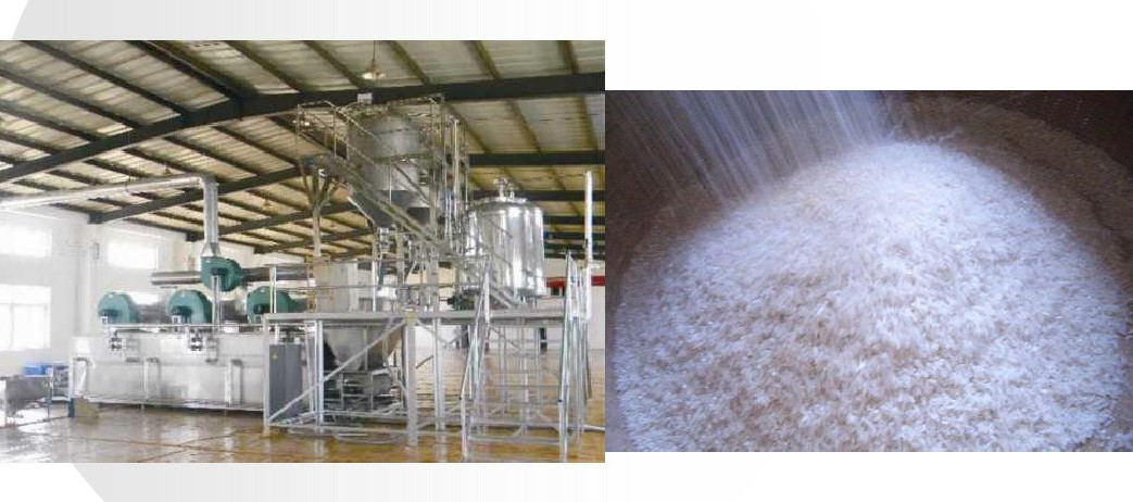 Special rice processing for nutrition and health care