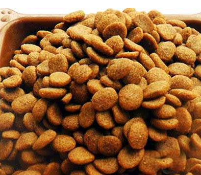 Study on Quality Control in Dog Food Processing