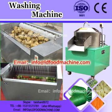 Industrial fruit washing process line machinery