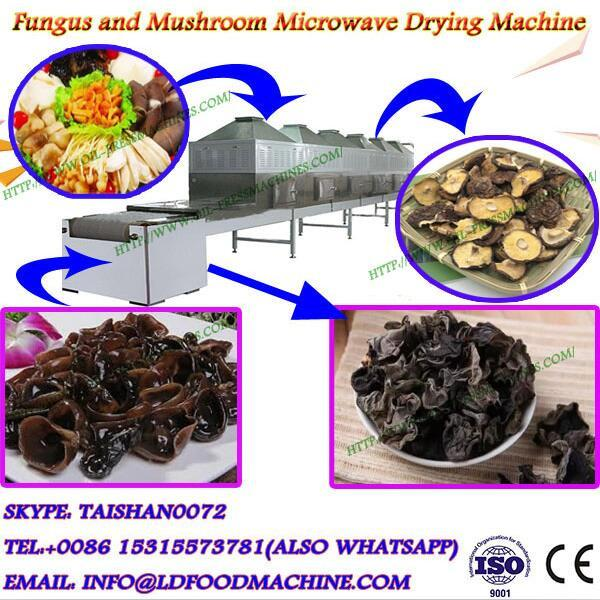 big capacity belt type microwave drying equipment for agaricus bisporus #1 image