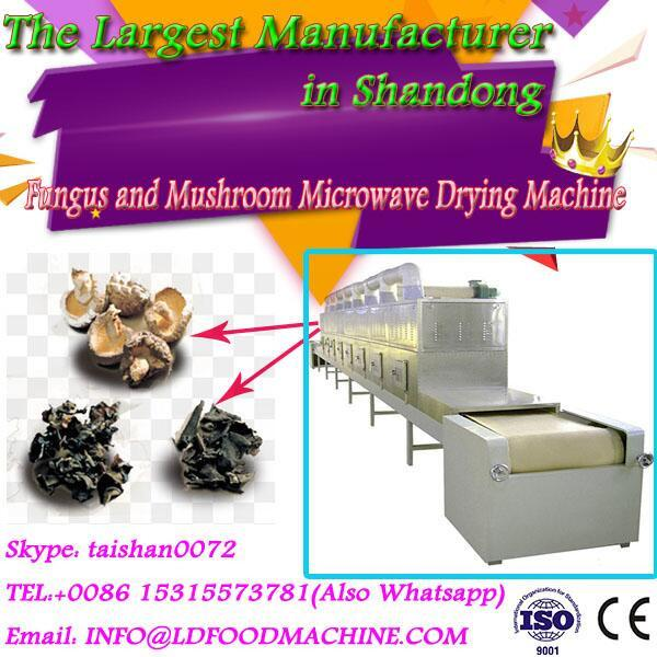 Good Efficiency Professional Designed microwave fungus and mushrooms drying machine #1 image