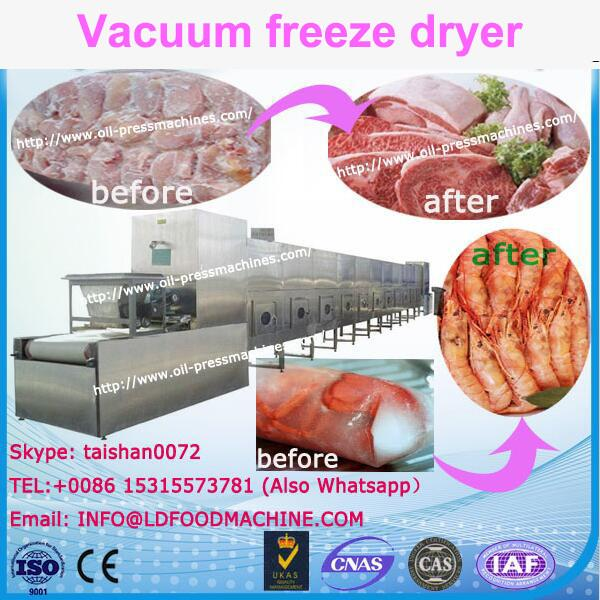 small freeze drying machinery lyophilization freeze drying for freeze dry fruit machinery #1 image
