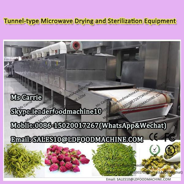 Tunnel-type Fruit and vegetable wine Microwave Drying and Sterilization Equipment #1 image