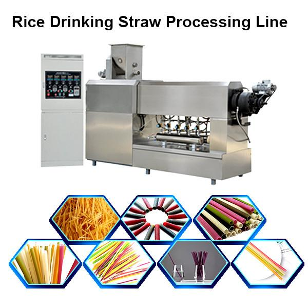 Eco Friendly Drinking Straws Biodegradable / Rice Straw Making Machine Drinking #3 image